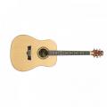 Peavey DW-1 Acoustic NAT