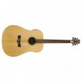 Peavey DW-3 Acoustic NAT